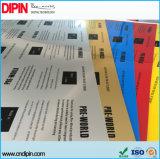 Пользовательские размер и цвет двойной лист из пластика ABS