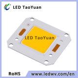 4046 Ra80 11000lm-12000lm Ingan材料100ワットの穂軸LEDチップ