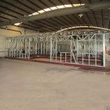 Configurazione chiara della Camera della villa della struttura d'acciaio