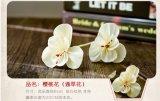 El mejor venta de Spar sola flor con aceite esencial difusor