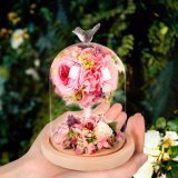 Natuurlijke 100% nam Bloem in Glas voor de Gift van de Valentijnskaart toe