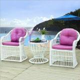 Muebles al aire libre de la rota del PE del jardín del balcón del ocio moderno