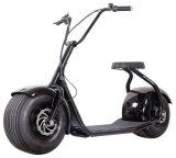 Harley Fat Scooter eléctrico de los neumáticos (EB-007).