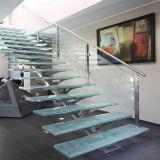 Escalera de interior del vidrio Tempered con la pisada de madera