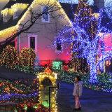 태양 강화한 크리스마스 불빛이 12m 옥외 태양 끈에 의하여 점화한다