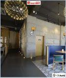 UL Ce mur simples en cuivre lampe avec finition en chrome brossé