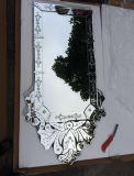 Specchio poco costoso della parete di rettangolo dello specchio di disegno veneziano antico di bellezza