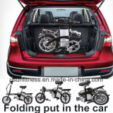 Entfernen faltendes Fahrrad-elektrisches Fahrrad der Qualitäts-250W 14inch mit Batterie