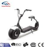 Scooter électrique Scooter Citycoco 1000W