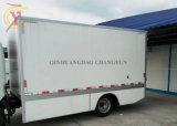 Le PRF/GRP gel coat Feuille pour réfrigérateur camion/gel coat PRF