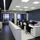 l'indicatore luminoso di striscia flessibile di bianco 600 il LED 3528 LED con CE ha elencato