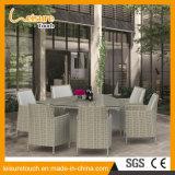 Современный новый отель/дома отдыха обставлены плетеной диван с седи одесную открытый патио с видом на сад мебель