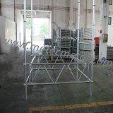 Trave d'acciaio fascio/della grata per il Decking del pavimento