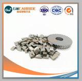 Pontas de carboneto de tungsténio viu ser usado para aço de corte