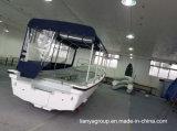 Liya 7.6m Fiberglas-Passagier-Boots-Fiberglaspanga-Boote für Verkauf