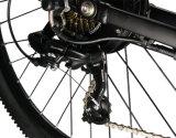 中国の卸し売り新製品の良質のスポーツの電気バイクMTB Ebikeの販売のための電気Mountianのバイクの自転車