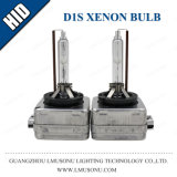 VERSTECKTE D1s Xenon-Birne 12V 35W 55W