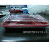 VacuümMachine van de Container van het Voedsel van het zetmeel de Beschikbare