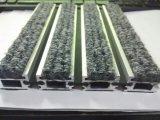 Les meilleures nattes antidérapage de vente de porte d'entrée du bâti 6063-T5 en aluminium