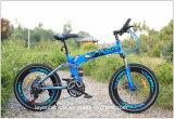 Красивый стиль Grils 20 дюйма на горных велосипедах детей велосипед /оптовой детский велосипед