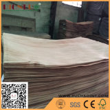 natürliches Gurjan/Keruing Furnier-Blatt der Fuss-3X6 Drehdes schnitt-