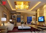 現代デザインガラスが付いている贅沢な天井ランプは服を着た