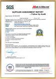 Gru professionali disponibili del manuale della manovella del fornitore dell'OEM