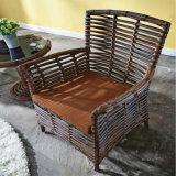 بيئيّة [ب] [رتّن] حديقة أثاث لازم خارجيّة [دين تبل] مع أربعة كرسي تثبيت