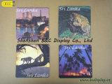 Coasters de papel absorvente de proteção ambiental (B & C-G092)