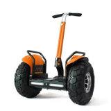 Un auto popolare delle 2 rotelle che equilibra motorino diritto elettrico con la maniglia