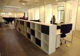 현대 목제 책꽂이 사무실 Furntiure