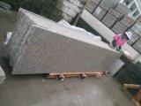 G664 화강암 Mountant 의 Luoyuan 빨간 화강암 석판, 중국 안개 화강암 층계