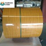 PPGI가 최고 판매 아름다운 나무로 되는 색깔 강철에 의하여 감긴다