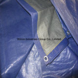 China Tarpaulin Factory Price Blue Tissus en toile de polyéthylène tissés / PE Tarps / Canvas