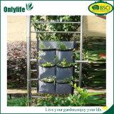 Onlylife sentía el plantador vivo de la pared del jardín vertical