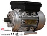 Ml (YL)単一Series/Mlのシリーズ単相二数キャパシタンス誘導電動機