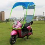 [أنتي-وف] كهربائيّة درّاجة درّاجة حركيّة [سكوتر] درّاجة ناريّة مطر مظلة مظلة