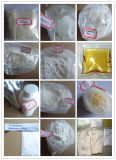 CAS 10418-03-8 Stanozol Powder Winstrol Steroid pour Fat Loss/Fat Burning Steroids