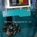 PU-Hefterzufuhr-Schaumgummi-Einspritzung-Maschine (BH-PU09D)