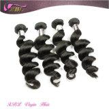 Nenhum cabelo não processado cru natural indiano químico do indiano do Virgin do cabelo ondulado