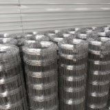 Hot Dipped Galvanized farm Field Fence/Grassland Fence/Cattle Fence