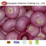 Лук верхнего качества свежий пурпуровый с хорошим ценой