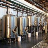 équipement de brassage de bière 100L utilisé Nano avec la CE