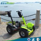 Newest auto deux roues scooter électrique d'équilibrage