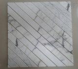 Mosaico de mármol blanco de Calacatta del nuevo diseño en nueva dimensión de una variable con precios muy competitivos