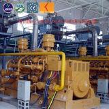De Elektrische centrale van het Gas van de stortplaats 10kw - de Generator van het Biogas 700kw