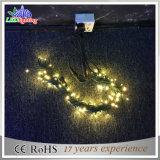 Luzes feericamente da corda do diodo emissor de luz do fio transparente ajustável ao ar livre do PVC dos 10m 22#