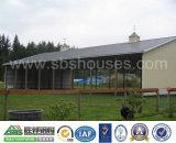 Bajo costo 2015 y nuevo edificio agrícola del equipo de la estructura de acero del diseño