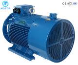 IP55 Y Трехфазный электродвигатель / двигатель на заводе цены