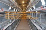 H Тип рамы Автоматического уровня куриные каркас для плат системы